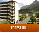 Forest Hill album